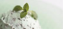 市販用アイスクリーム