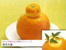 ホールタイプ 三宝柑